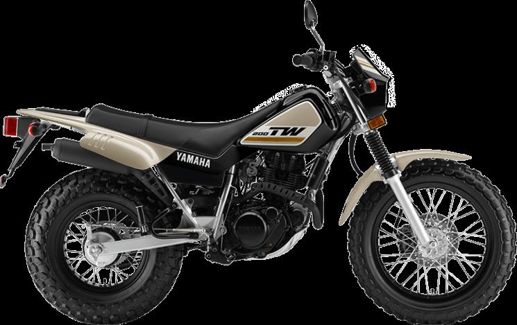 2019 Yamaha TW200E